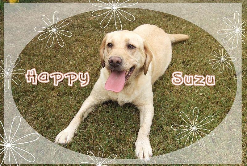 Happy_suzu