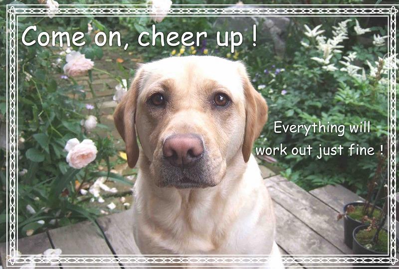 Cheer_up_3