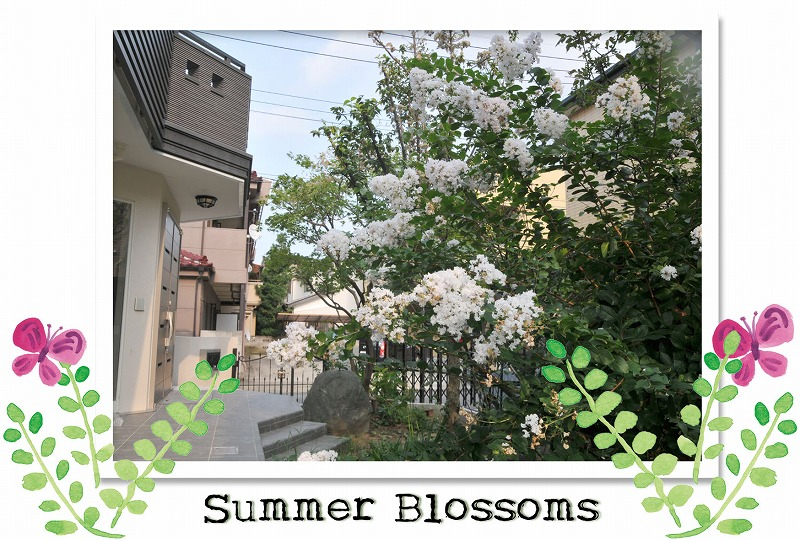 Summer_blossoms