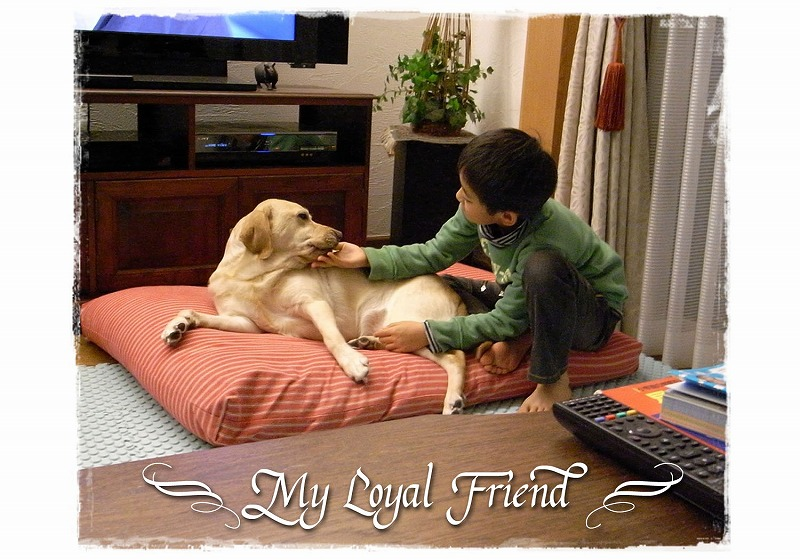 My_loyal_friend_2